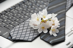 キーボードの上に乗ったネクタイ2本と桜